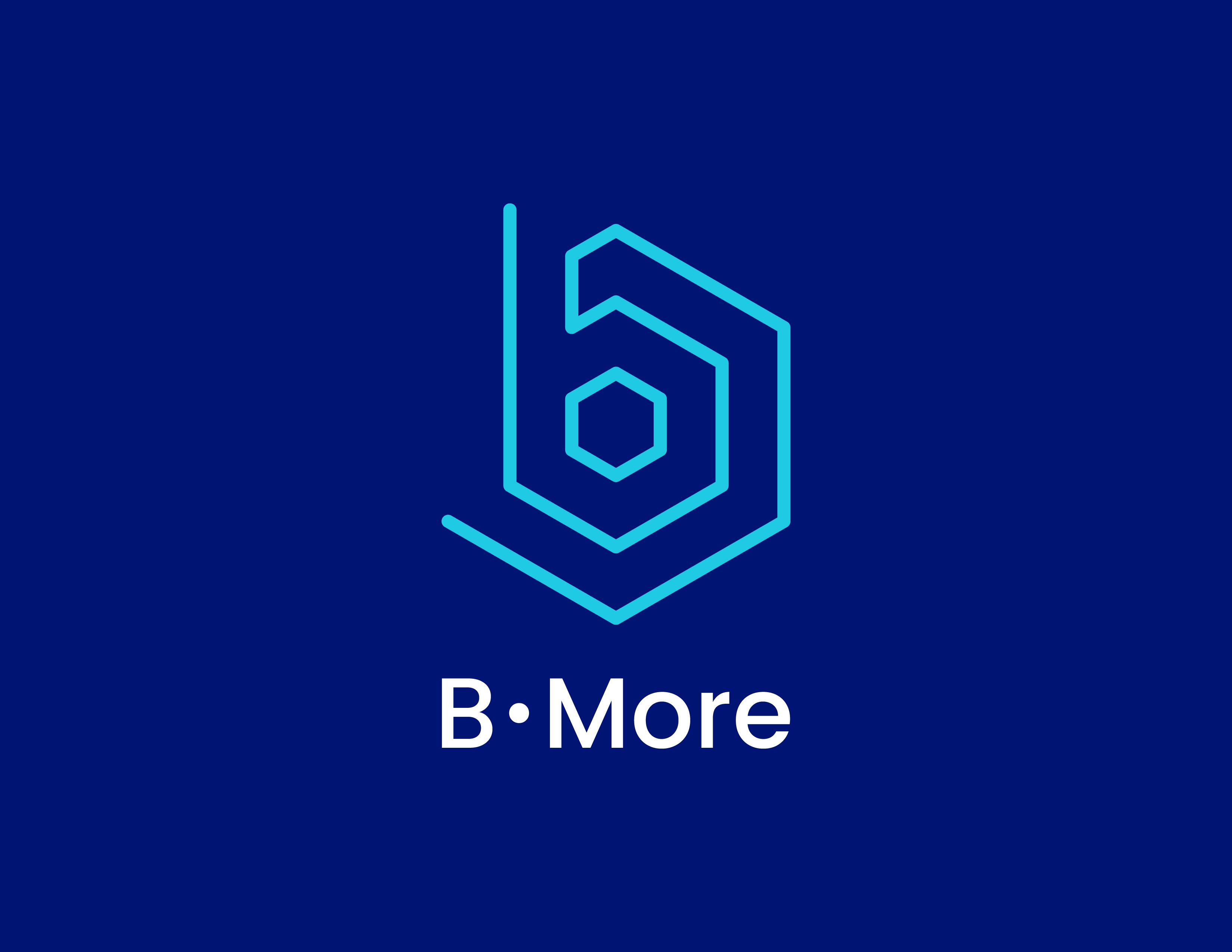 B-More LLC