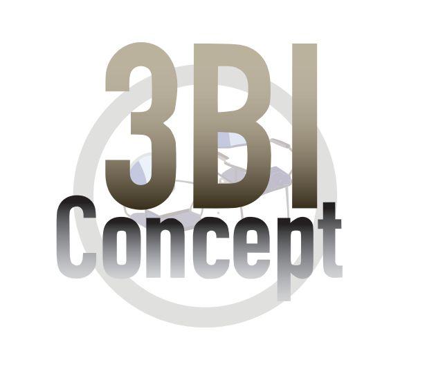 3BI Concept Inc