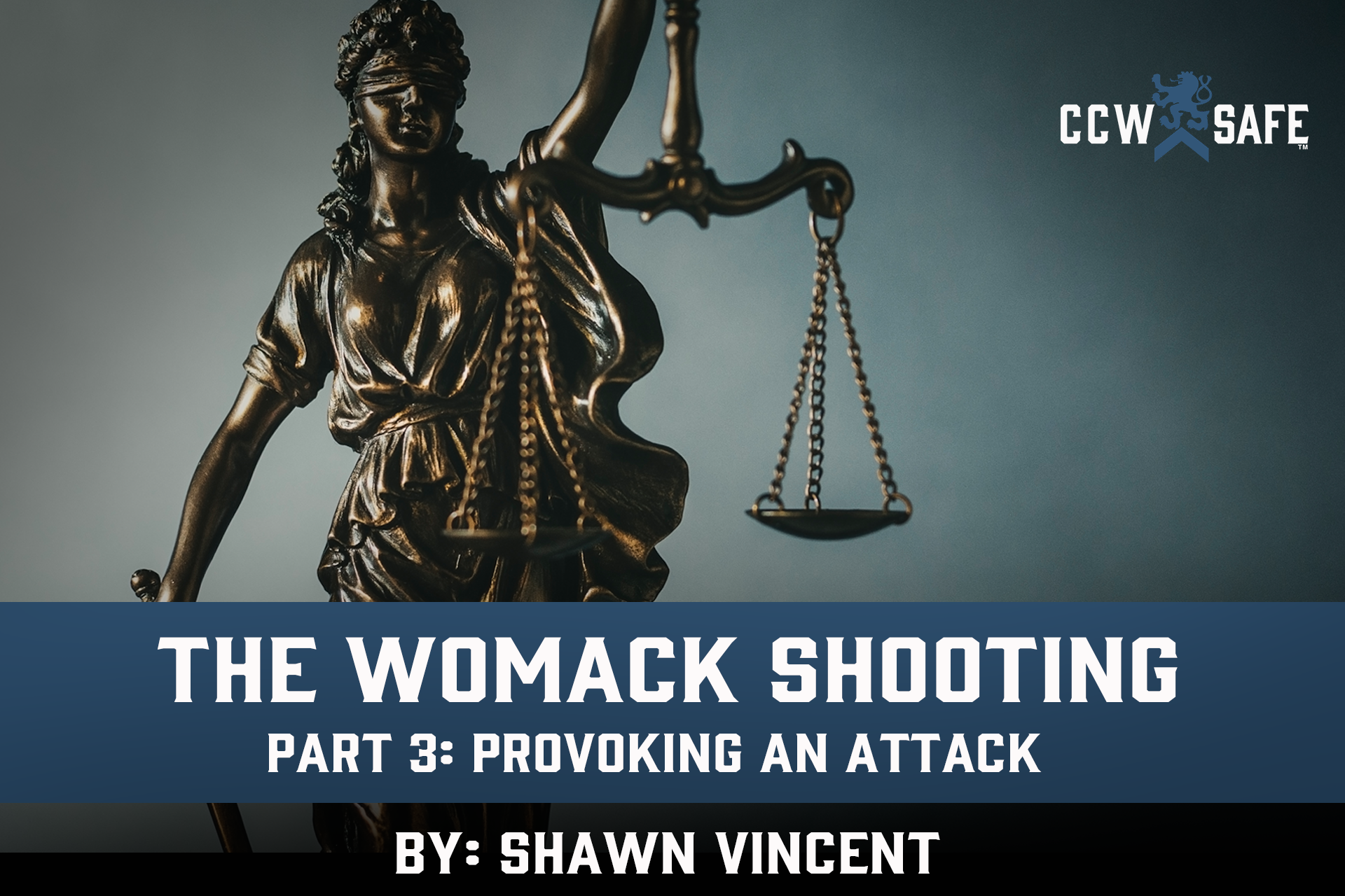 The Womack Shooting Part 3: Provoking an Attack