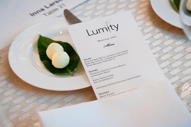 Lumity Gala 2017