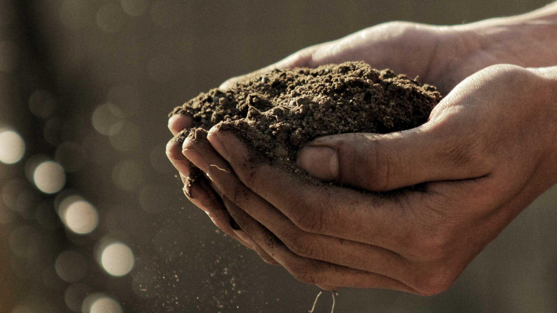 Soil Health Workshop