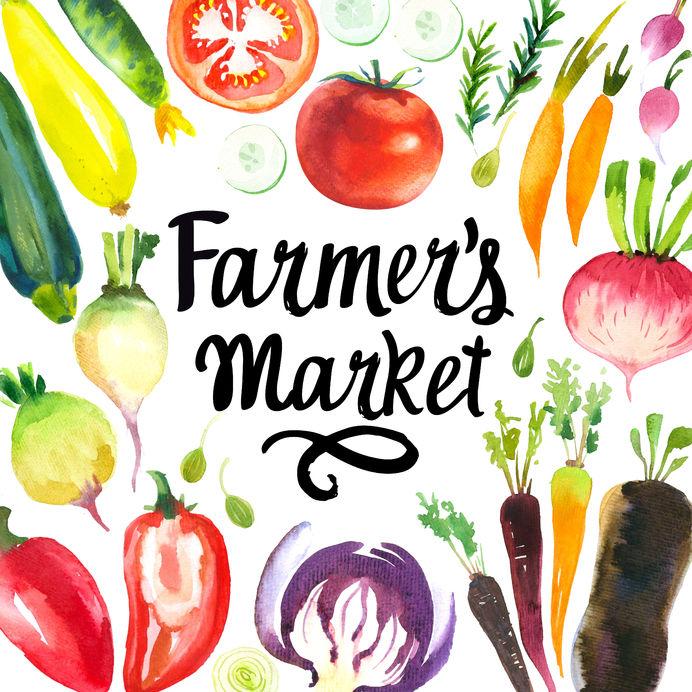 Nocatee Farmers Market: Island Experience