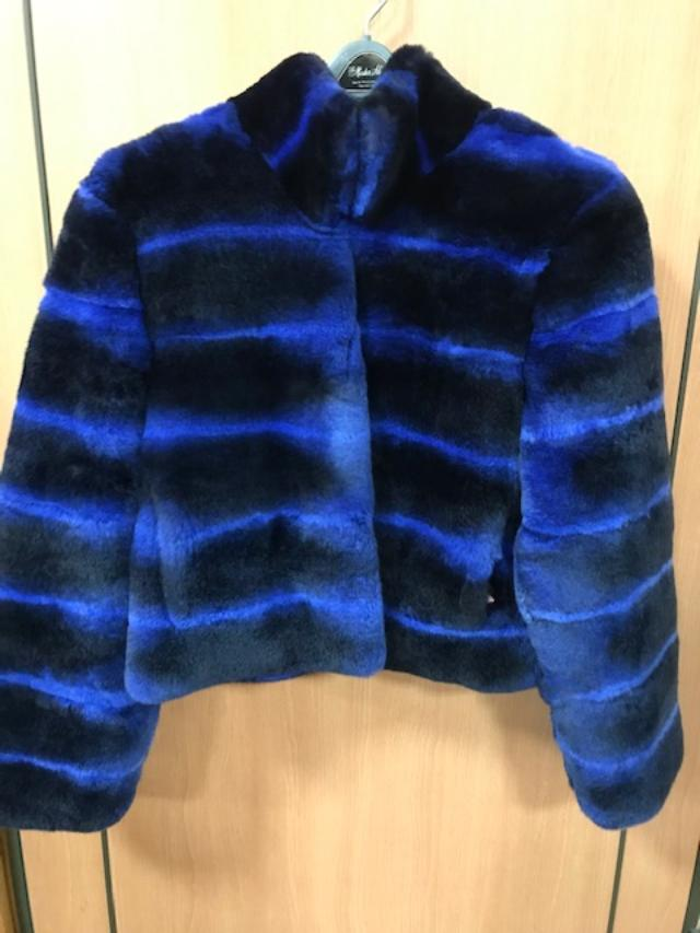 rex blue fur