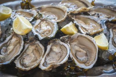 Raw Blue Point Oysters at Ristorante di Acquaviva, Sycamore