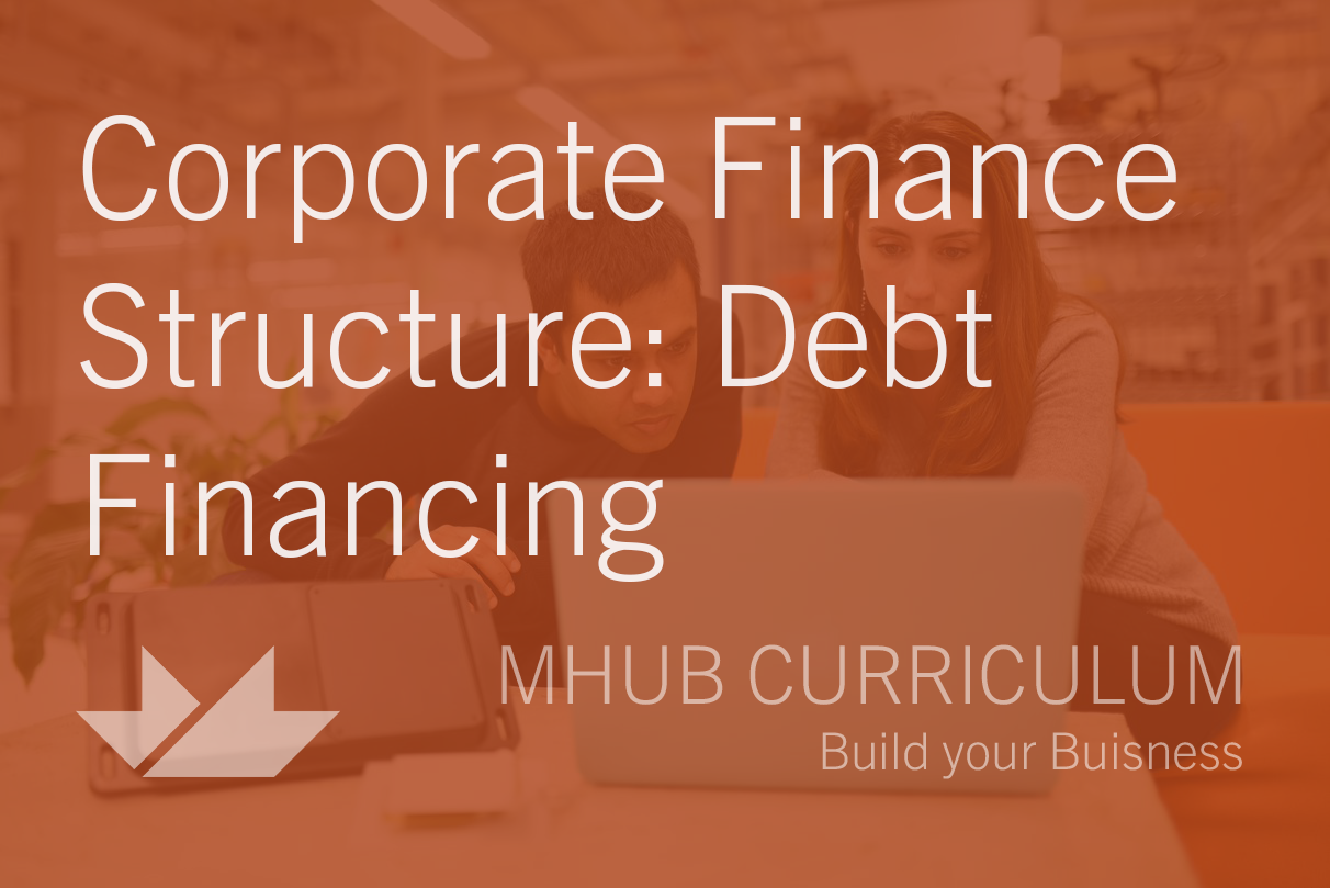 Corporate Finance Structure: Debt Financing