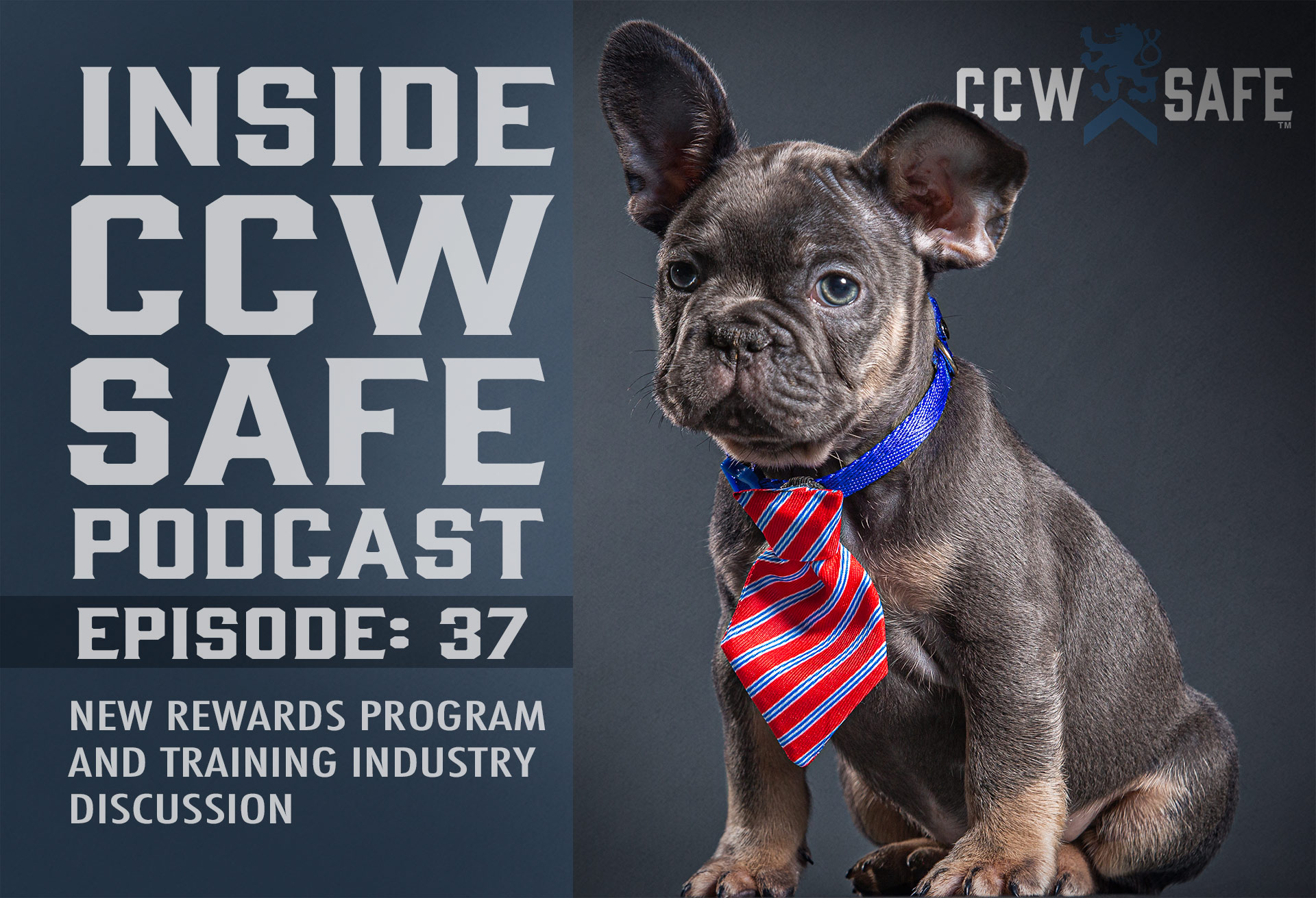 Inside CCW Safe Podcast-Episode 37: New Rewards Program and Training Industry Discussion