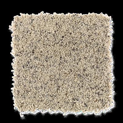 Mohawk's Finest Fashion (F) Carpet In Color Belgian Waffle