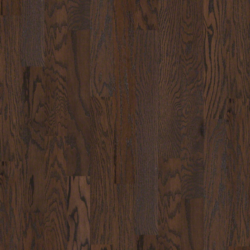 Shaw | Albright Oak 5 | Chocolate