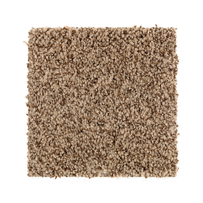 Mohawk's Finest Fashion (T) Carpet In Color Truffle