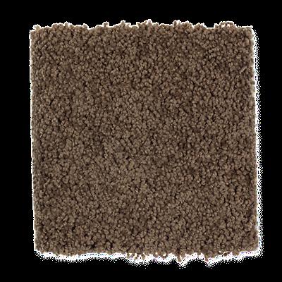 Mohawk's Finest Fashion (S) Carpet In Color Piano Brown