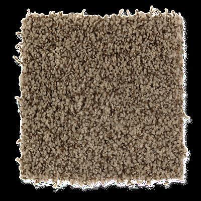 Mohawk's Finest Fashion (T) Carpet In Color Rich Earth