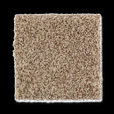 Mohawk's Finest Fashion (T) Carpet In Color Terra Nueva