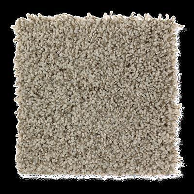 Mohawk's Finest Fashion (T) Carpet In Color Titan