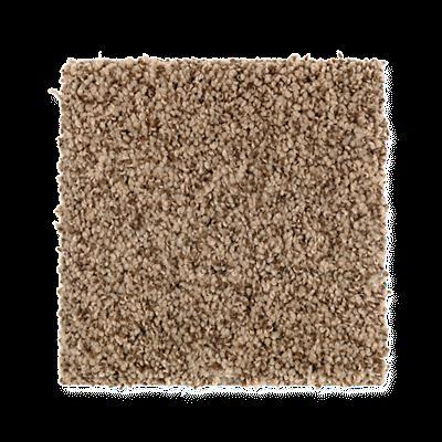 Mohawk's Finest Fashion (T) Carpet In Color Truffle