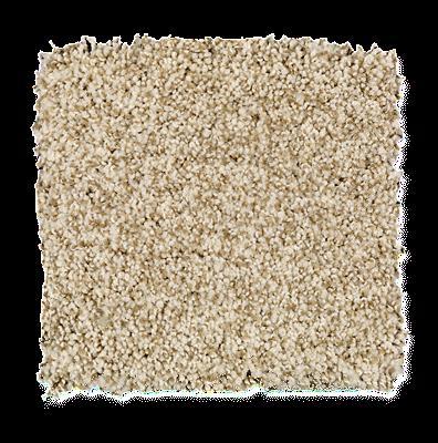 Mohawk's Finest Fashion (T) Carpet In Color Vanilla Steam