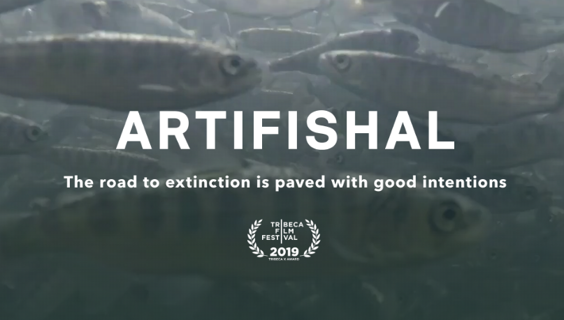Patagonia Films Presents: Artifishal